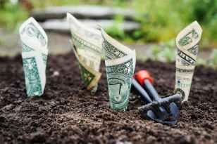 u s dollar bills pin down on the ground
