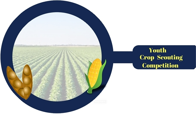 Crop Scout Design (1)