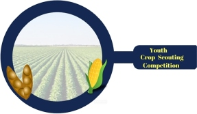 Crop Scout Design (1)