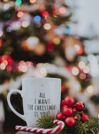 selective focus photography of ceramic mug near candy cane